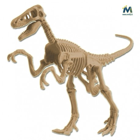Velociraptor da scavare