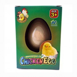 Uovo di pulcino