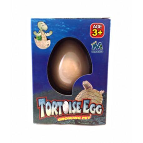 Uovo di tartaruga